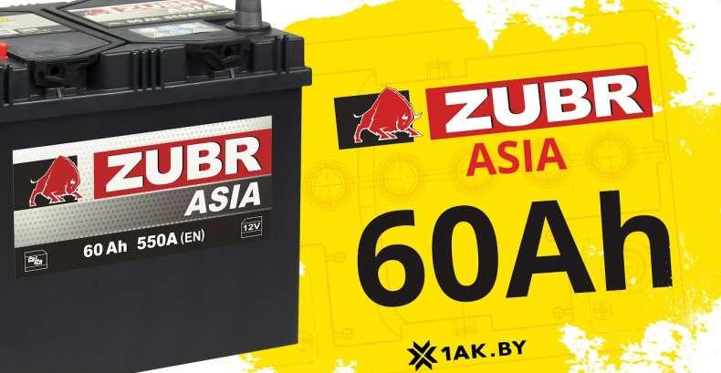 ZUBR ASIA 60 Ah: технические характеристики аккумуляторной батареи
