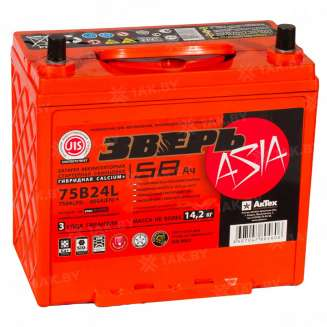 Аккумулятор ЗВЕРЬ (58 Ah) 600 A, 12 V Обратная, R+ 0