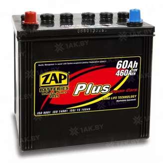 Аккумулятор ZAP (60 Ah) 460 A, 12 V Прямая, L+ 0